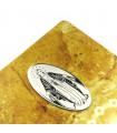 VIRGEN MILAGROSA - Emblema adhesivo para el móvil, coche...